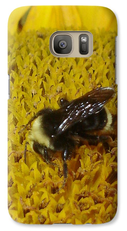 Bee Galaxy S7 Case featuring the photograph Bee On Sunflower 4 by Chandelle Hazen