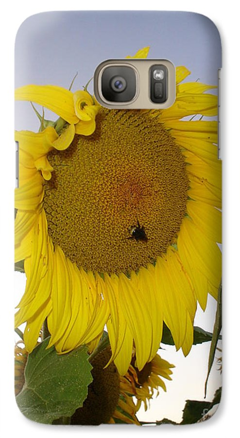 Bee On Sunflower Galaxy S7 Case featuring the photograph Bee On Sunflower 5 by Chandelle Hazen