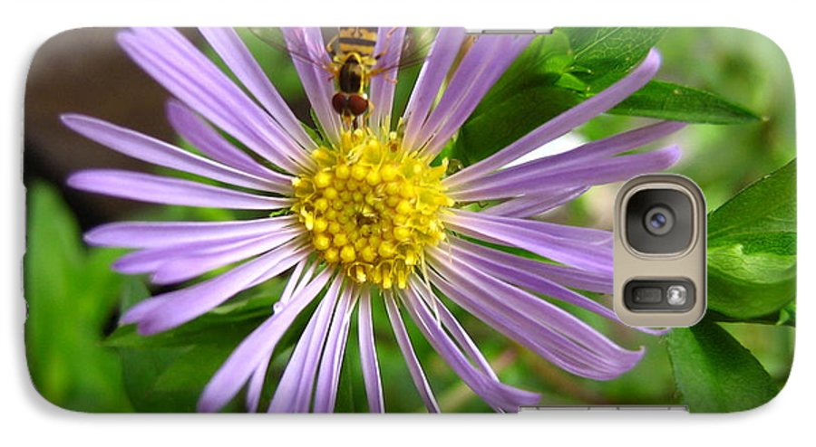 Bee Galaxy S7 Case featuring the photograph Bee On Wildflower by Melissa Parks