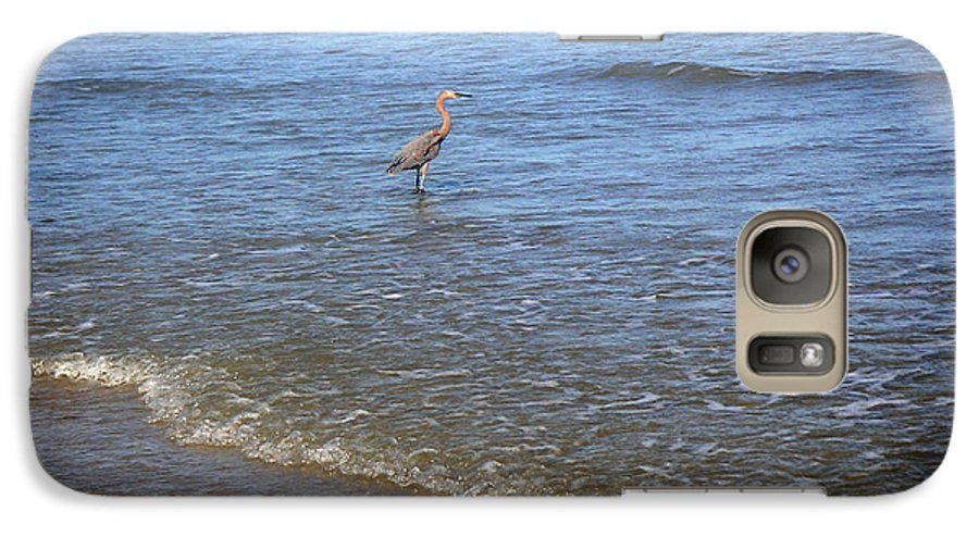 Nature Galaxy S7 Case featuring the photograph Being One With The Gulf - Detached by Lucyna A M Green