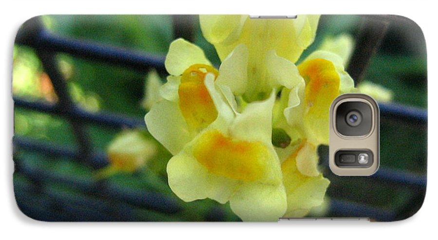 Flower Galaxy S7 Case featuring the photograph Between The Fences by Melissa Parks