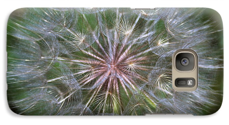 Dandelion Galaxy S7 Case featuring the photograph Big Wish by Linda Sannuti
