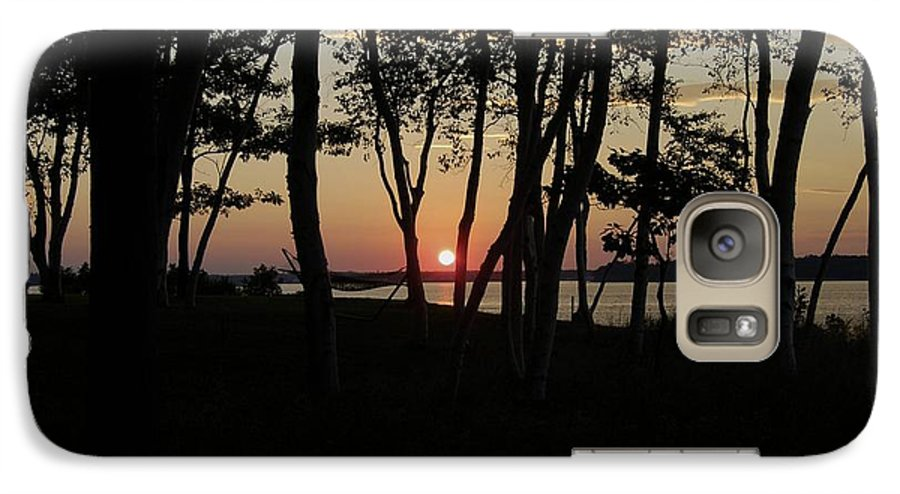 Birch Galaxy S7 Case featuring the photograph Birches Watch The Sunset by Faith Harron Boudreau