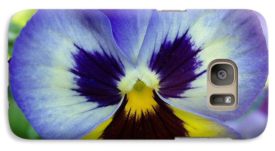 Flowers Galaxy S7 Case featuring the photograph Blue And Yellow Pansy by Nancy Mueller
