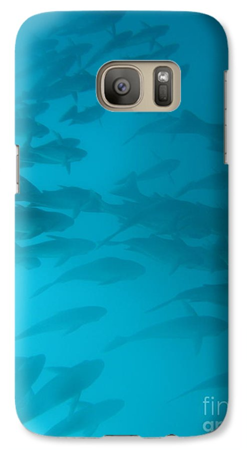 Underwater Galaxy S7 Case featuring the photograph Blue Flash by Chad Natti