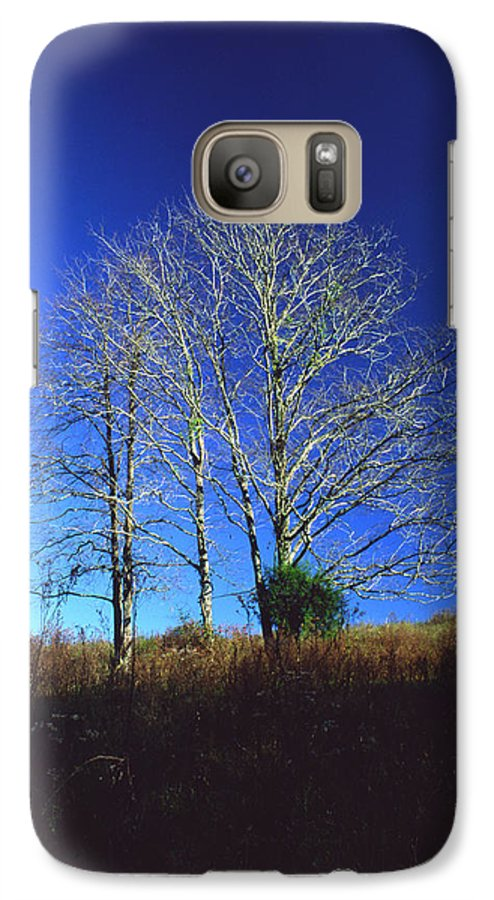 Landscape Galaxy S7 Case featuring the photograph Blue Tree In Tennessee by Randy Oberg