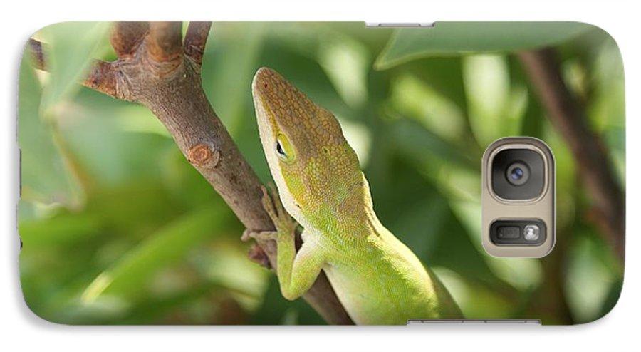 Lizard Galaxy S7 Case featuring the photograph Blusing Lizard by Shelley Jones