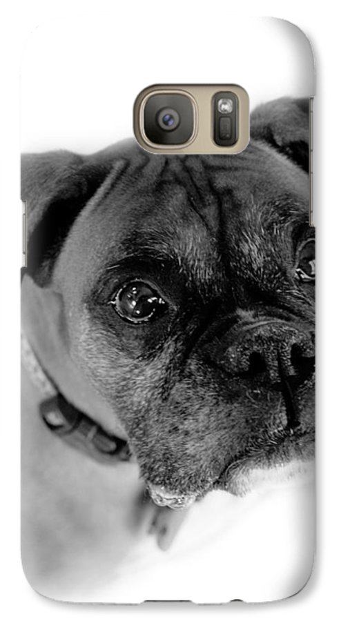 Boxer Galaxy S7 Case featuring the photograph Boxer Dog by Marilyn Hunt
