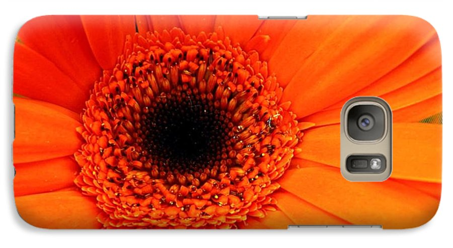 Flower Galaxy S7 Case featuring the photograph Bright Red by Rhonda Barrett