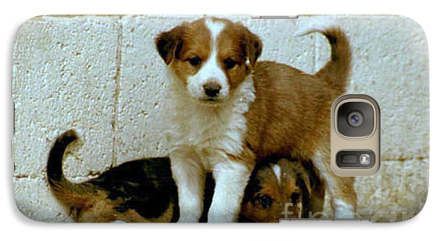 Puppies Galaxy S7 Case featuring the photograph Brothers by Kathy McClure