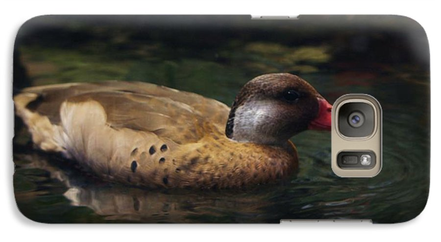 Duck Galaxy S7 Case featuring the photograph Brown Duck by Kenna Westerman