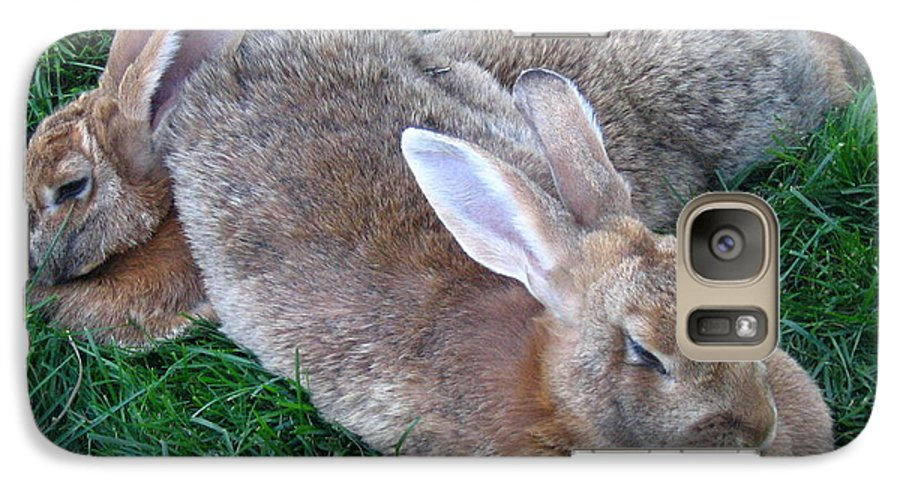 Rabbit Galaxy S7 Case featuring the photograph Brown Rabbits by Melissa Parks