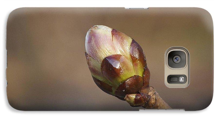 Bud Galaxy S7 Case featuring the photograph Budding by Faith Harron Boudreau