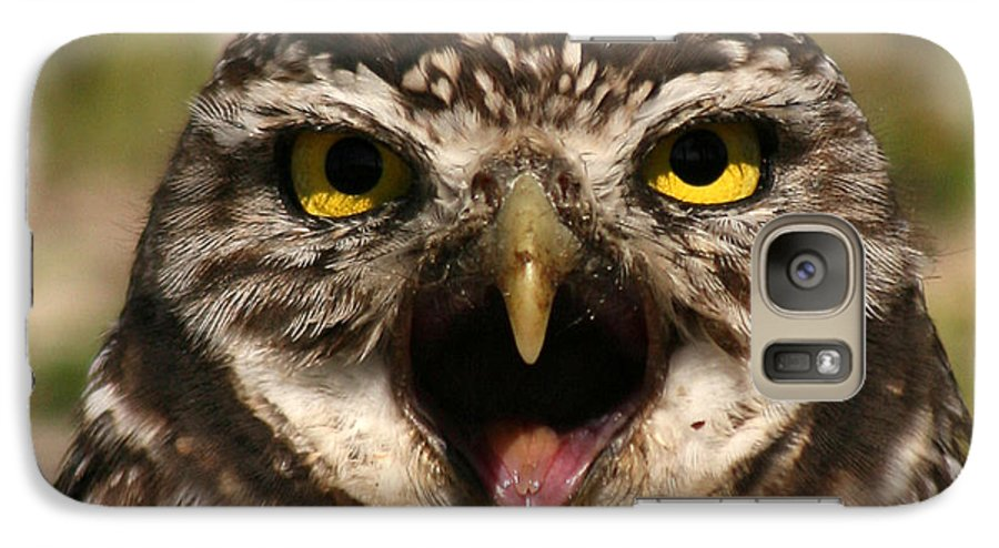 Owl Galaxy S7 Case featuring the photograph Burrowing Owl Eye To Eye by Max Allen