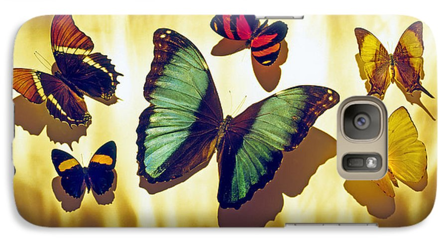 Animals Galaxy S7 Case featuring the photograph Butterflies by Tony Cordoza