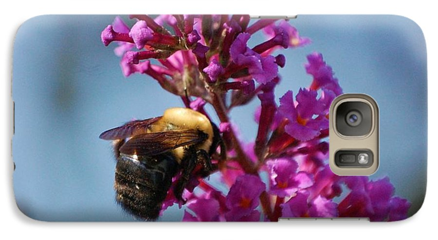 Bee Galaxy S7 Case featuring the photograph Buzzed by Debbi Granruth