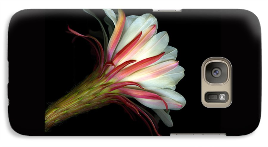 Scanart Galaxy S7 Case featuring the photograph Cactus Flower by Christian Slanec