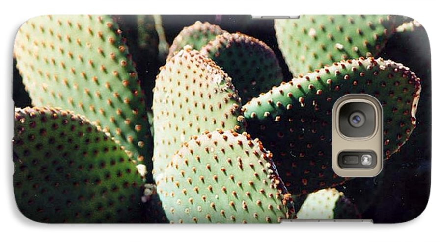 Field Galaxy S7 Case featuring the photograph Cactus by Margaret Fortunato