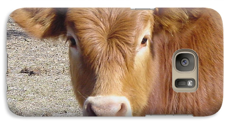 Farm Galaxy S7 Case featuring the painting Calf Smiles by Debbie May