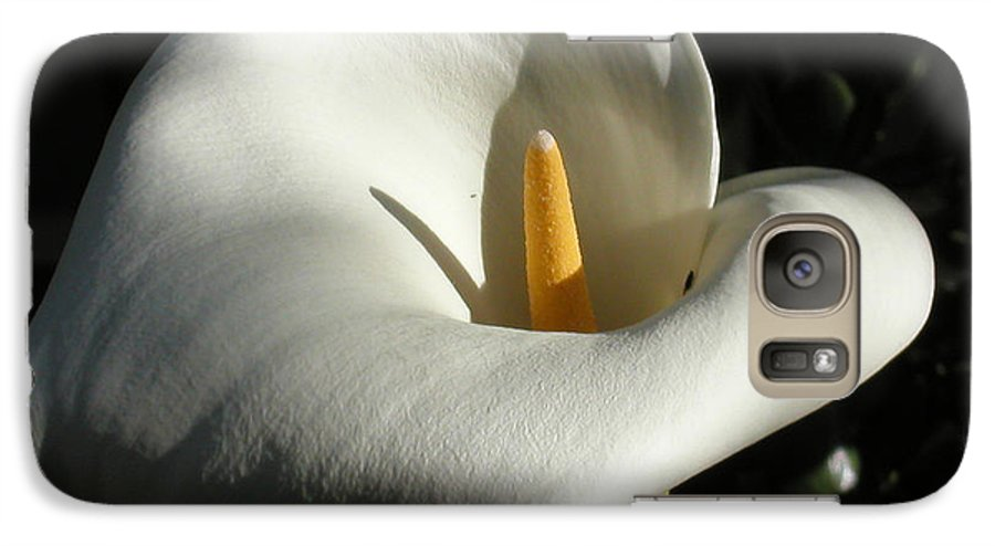 Flowers Galaxy S7 Case featuring the photograph Calla Lily-santa Monica - 2005 by Ann Tracy