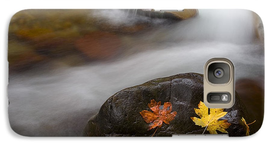 Leaves Galaxy S7 Case featuring the photograph Castaways by Mike Dawson