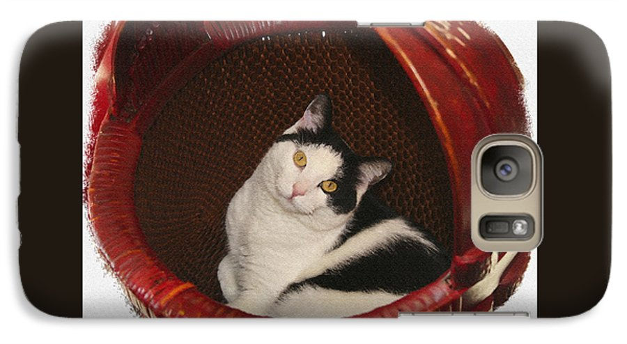 Cat Galaxy S7 Case featuring the photograph Cat In A Basket by Margie Wildblood