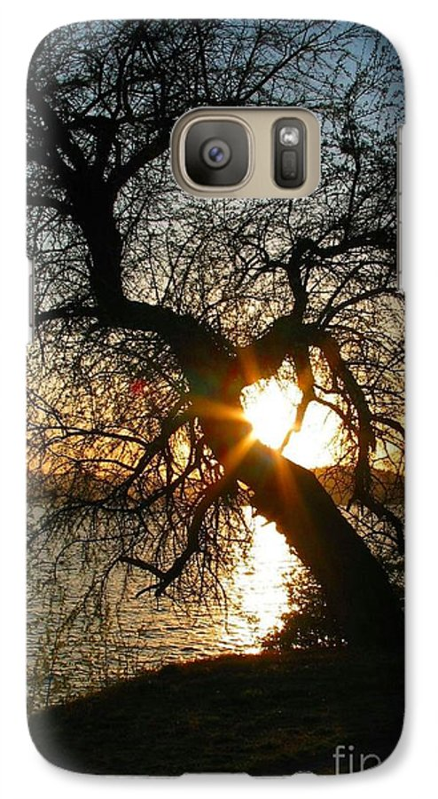 Tree Galaxy S7 Case featuring the photograph Character by Idaho Scenic Images Linda Lantzy
