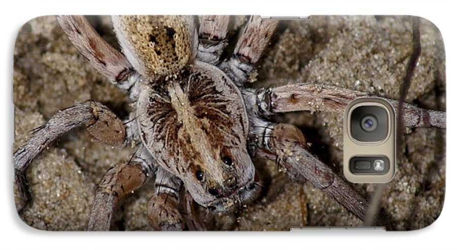 Spider Galaxy S7 Case featuring the photograph Charlotte by Debbie May
