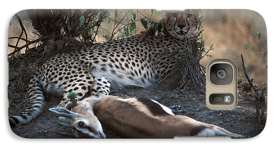 Spots Galaxy S7 Case featuring the photograph Cheetah With Kill by Carl Purcell