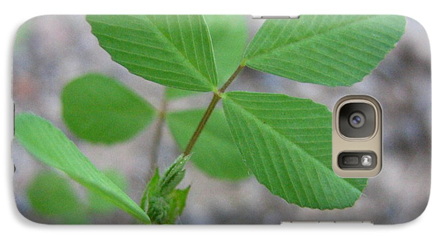 Clover Galaxy S7 Case featuring the photograph Clover by Melissa Parks