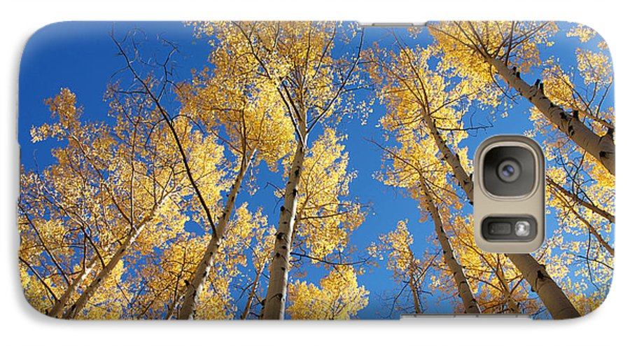Aspen Galaxy S7 Case featuring the photograph Colorado Aspen by Jerry McElroy