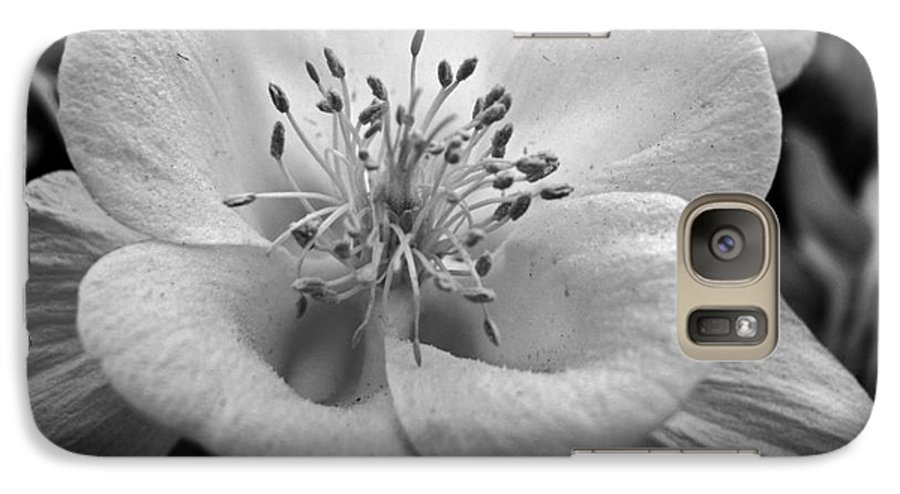 Flowers Galaxy S7 Case featuring the photograph Columbine by Amanda Barcon