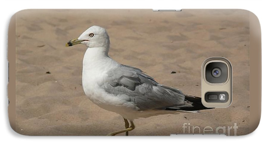 Bird Galaxy S7 Case featuring the photograph Come On Take The Picture Already by Barb Montanye Meseroll