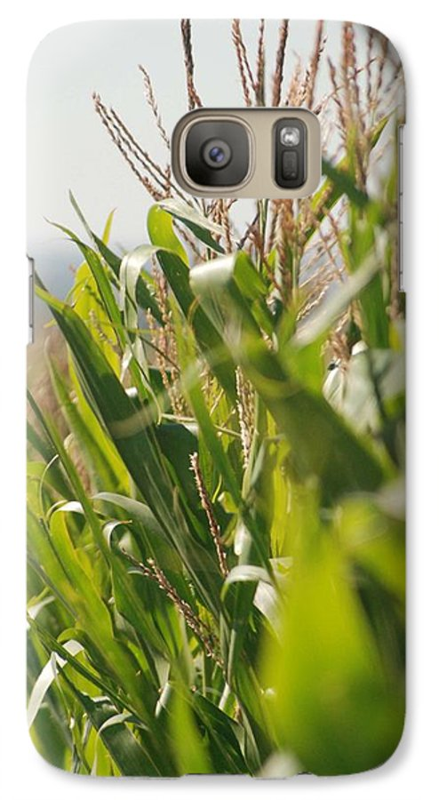 Corn Galaxy S7 Case featuring the photograph Corn Country by Margaret Fortunato