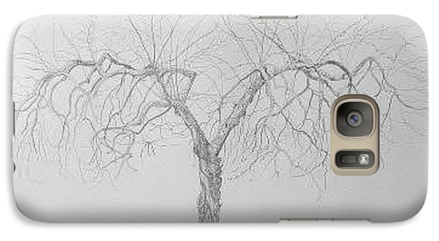 Cortland Apple Tree Galaxy S7 Case featuring the drawing Cortland Apple by Leah Tomaino