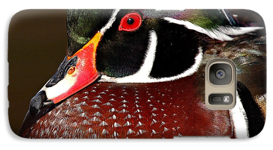 Duck Galaxy S7 Case featuring the photograph Courtship Colors Of A Wood Duck Drake by Max Allen