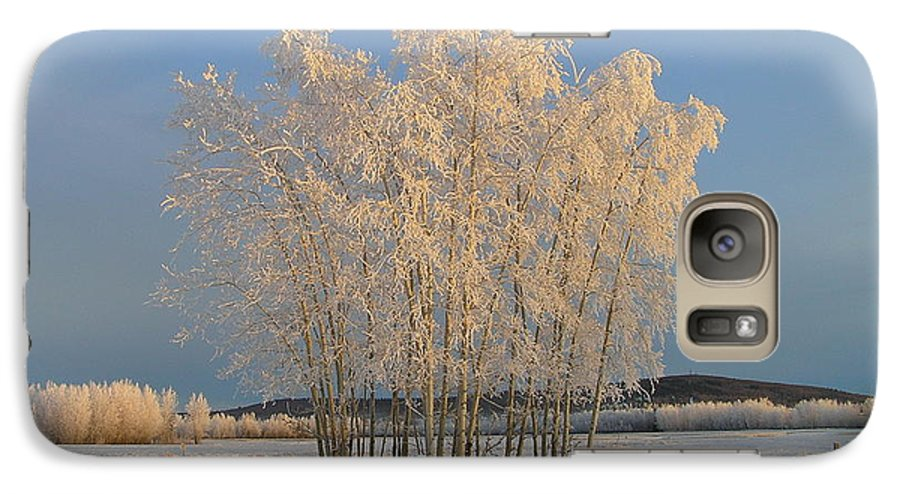 Snow Galaxy S7 Case featuring the photograph Creamer Field by Louise Magno