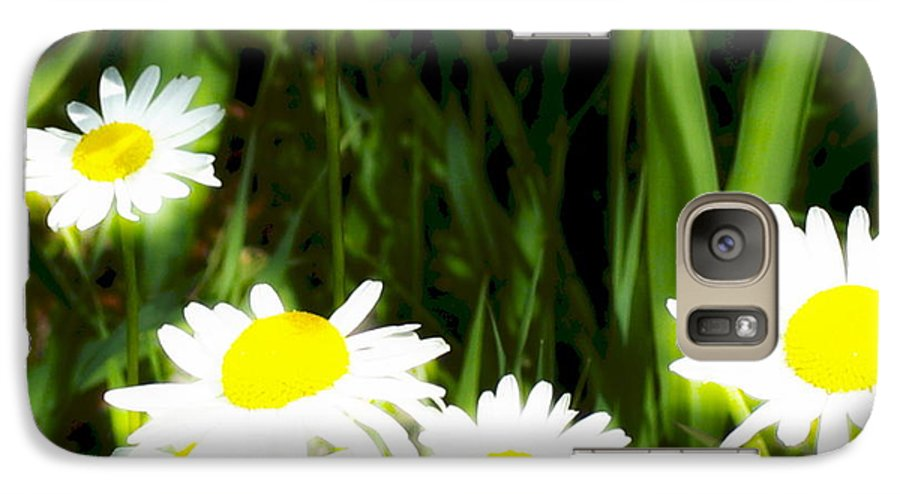 Daisies Galaxy S7 Case featuring the photograph Daisy Dream by Idaho Scenic Images Linda Lantzy