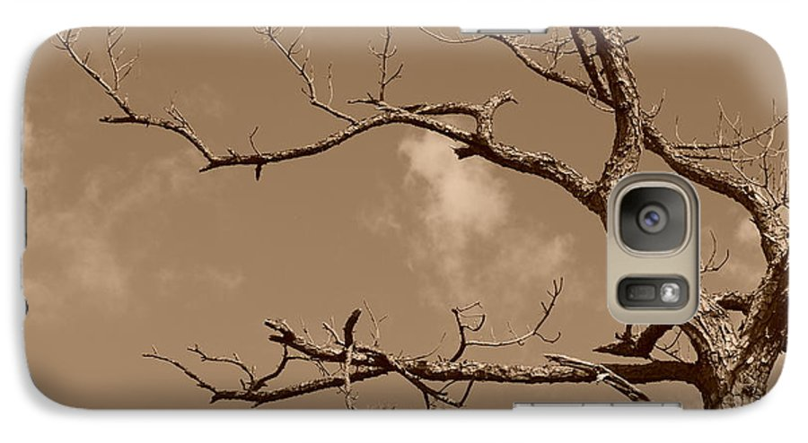 Sepia Galaxy S7 Case featuring the photograph Dead Wood by Rob Hans