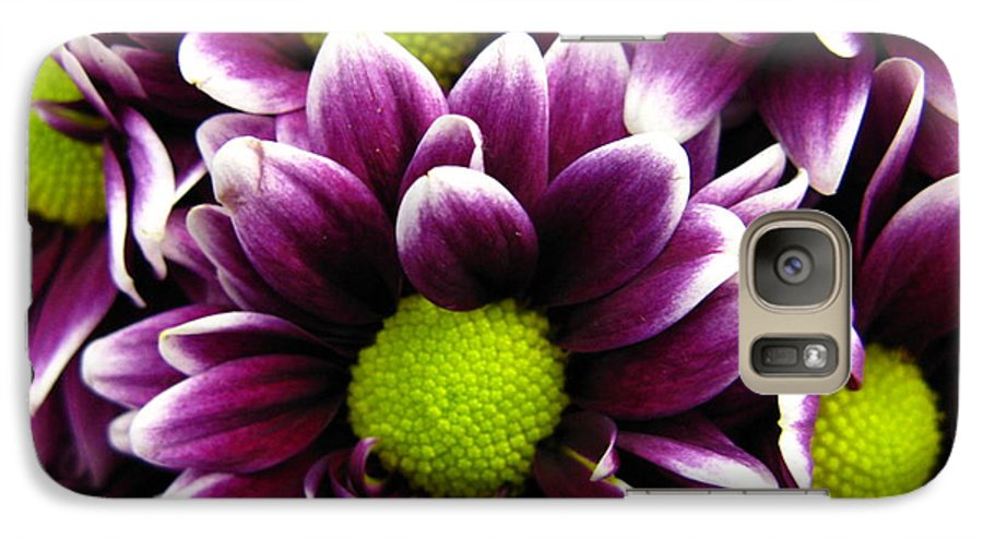 Purple Galaxy S7 Case featuring the photograph Delicate Purple by Rhonda Barrett