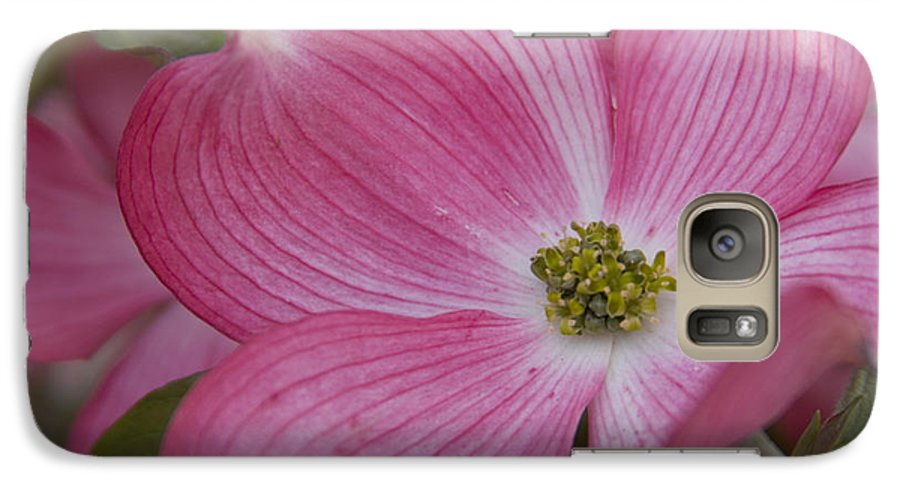 Dogwood Galaxy S7 Case featuring the photograph Dogwood Bloom by Idaho Scenic Images Linda Lantzy