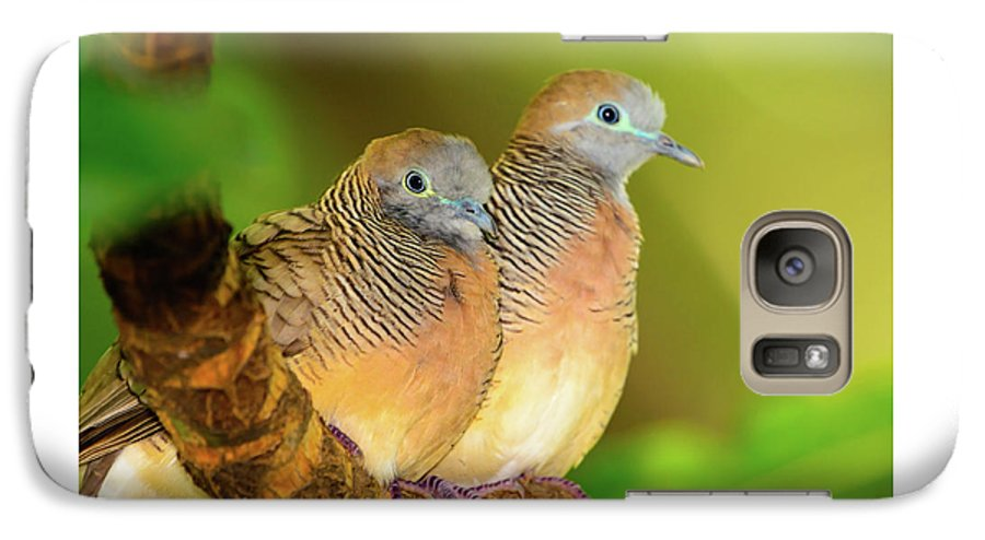 Dove Galaxy S7 Case featuring the photograph Dove Love by Jeff Jarrett