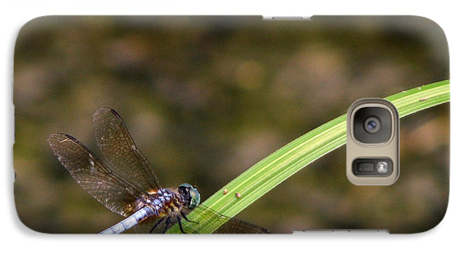 Dragonfly Galaxy S7 Case featuring the photograph Dragonfly by Amanda Barcon