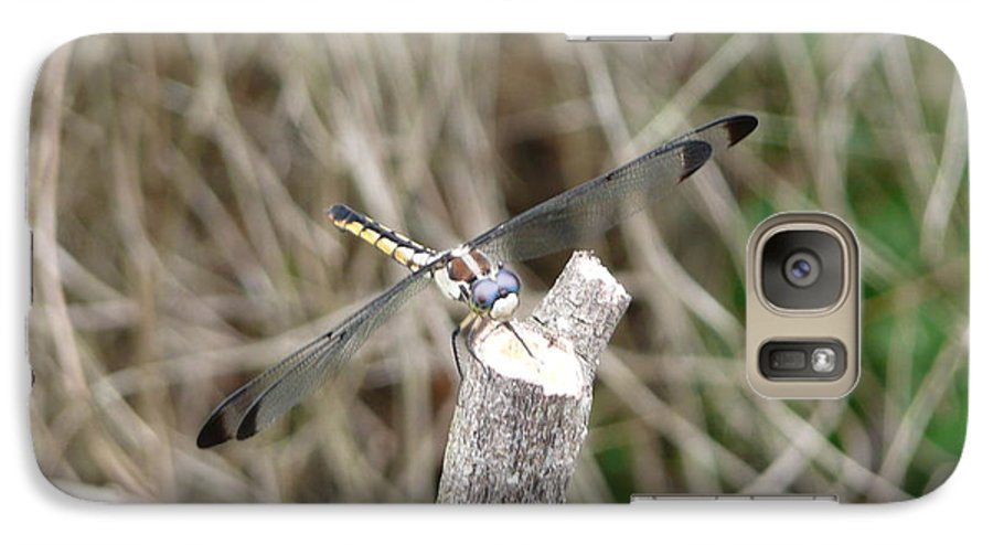 Wildlife Galaxy S7 Case featuring the photograph Dragonfly I by Kathy Schumann