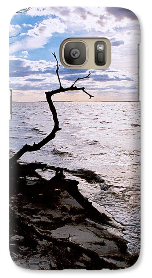 Barnegat Galaxy S7 Case featuring the photograph Driftwood Dragon-barnegat Bay by Steve Karol