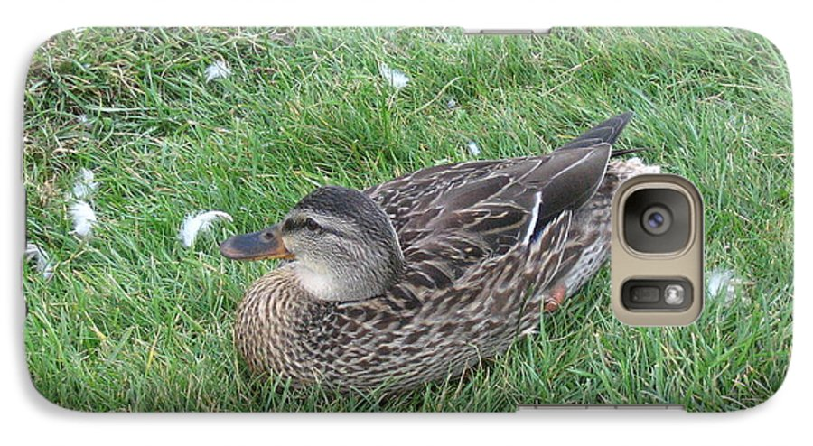 Duck Galaxy S7 Case featuring the photograph Duck by Melissa Parks