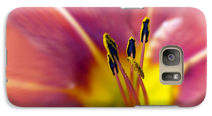 Easter Lily Lilium Lily Flowers Flower Floral Bloom Blossom Blooming Garden Nature Plant Petals Plants Grow Species Garden One Single 1 Petals Close-up Close Up Cultivate Botanical Botany Nature Galaxy S7 Case featuring the photograph Easter Lily 3 by Tony Cordoza