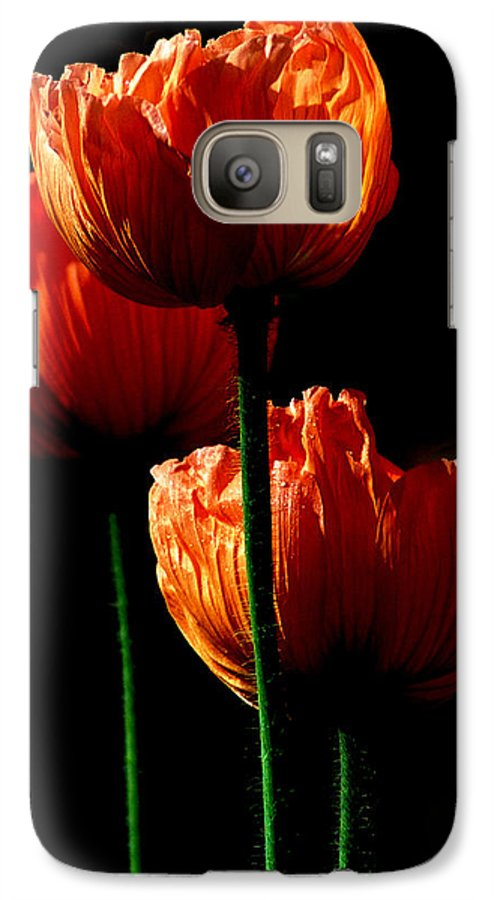 Photograph Galaxy S7 Case featuring the photograph Elegance by Stephie Butler