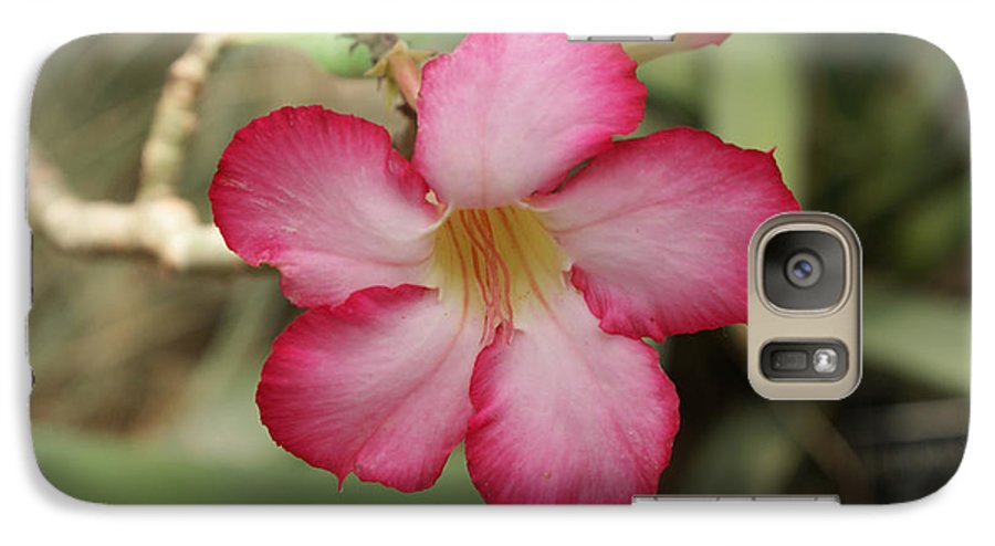 Floral Galaxy S7 Case featuring the photograph Elegant by Shelley Jones