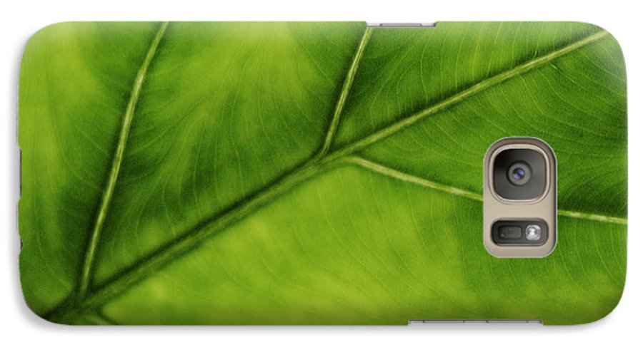 Leaf Galaxy S7 Case featuring the photograph Elephant Ear by Marilyn Hunt